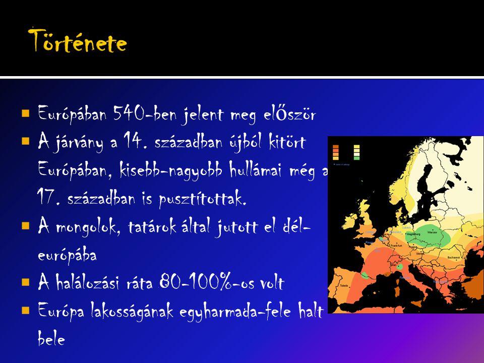  Európában 540-ben jelent meg el ő ször  A járvány a 14.