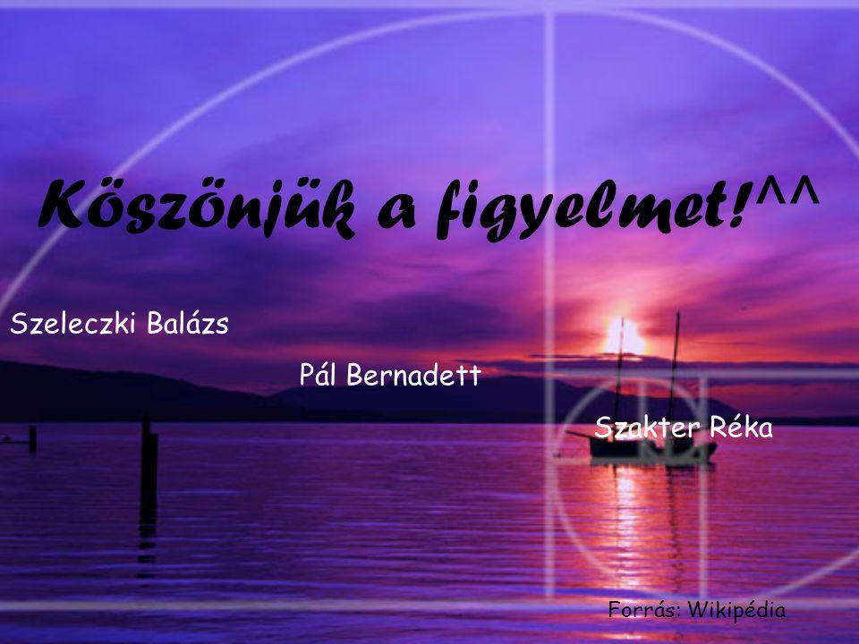 Köszönjük a figyelmet!^^ Szeleczki Balázs Pál Bernadett Szakter Réka Forrás: Wikipédia