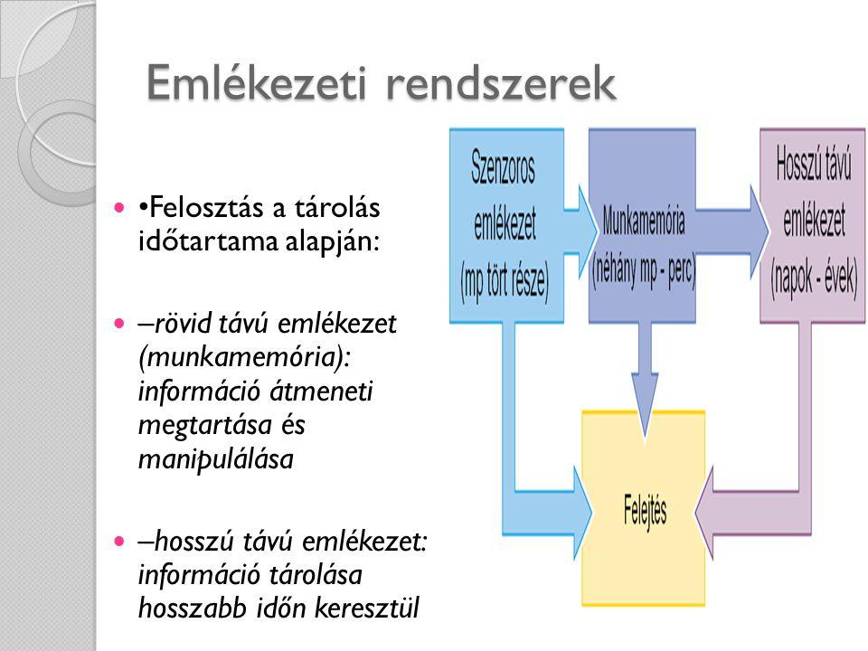 Emlékezeti rendszerek Felosztás a tárolás időtartama alapján: –rövid távú emlékezet (munkamemória): információ átmeneti megtartása és manipulálása –ho