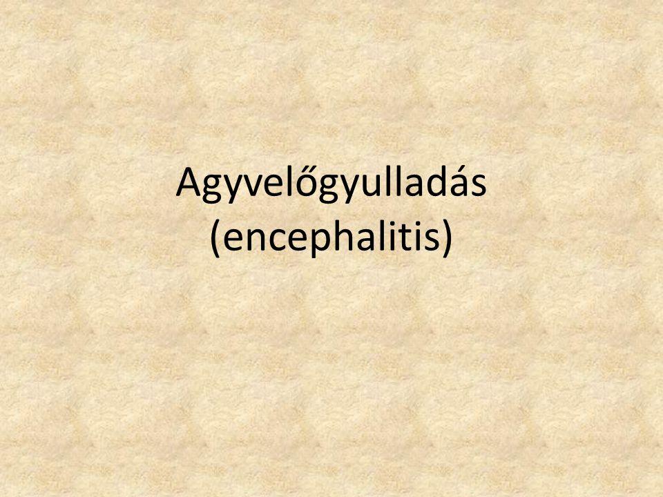 Agyvelőgyulladás (encephalitis)