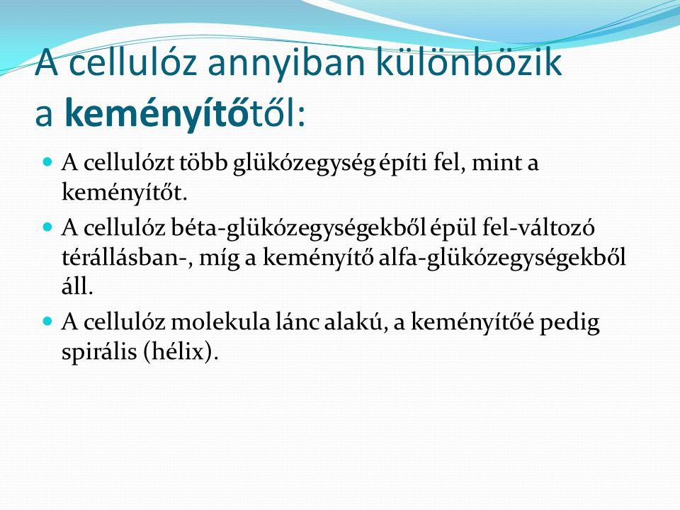 A cellulóz annyiban különbözik a keményítőtől: A cellulózt több glükózegység építi fel, mint a keményítőt.