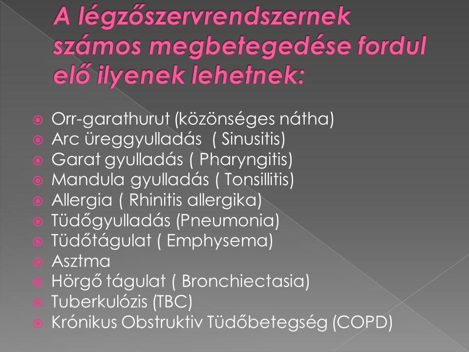  Orr-garathurut (közönséges nátha)  Arc üreggyulladás ( Sinusitis)  Garat gyulladás ( Pharyngitis)  Mandula gyulladás ( Tonsillitis)  Allergia ( Rhinitis allergika)  Tüdőgyulladás (Pneumonia)  Tüdőtágulat ( Emphysema)  Asztma  Hörgő tágulat ( Bronchiectasia)  Tuberkulózis (TBC)  Krónikus Obstruktiv Tüdőbetegség (COPD)