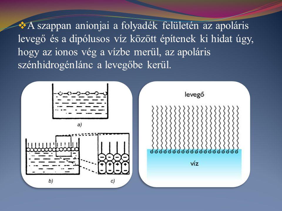  A szappan anionjai a folyadék felületén az apoláris levegő és a dipólusos víz között építenek ki hidat úgy, hogy az ionos vég a vízbe merül, az apol