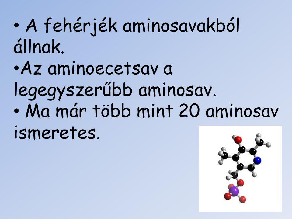 A fehérjék aminosavakból állnak. Az aminoecetsav a legegyszerűbb aminosav. Ma már több mint 20 aminosav ismeretes.
