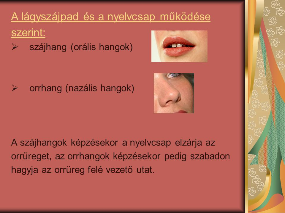 A lágyszájpad és a nyelvcsap működése szerint:  szájhang (orális hangok)  orrhang (nazális hangok) A szájhangok képzésekor a nyelvcsap elzárja az or