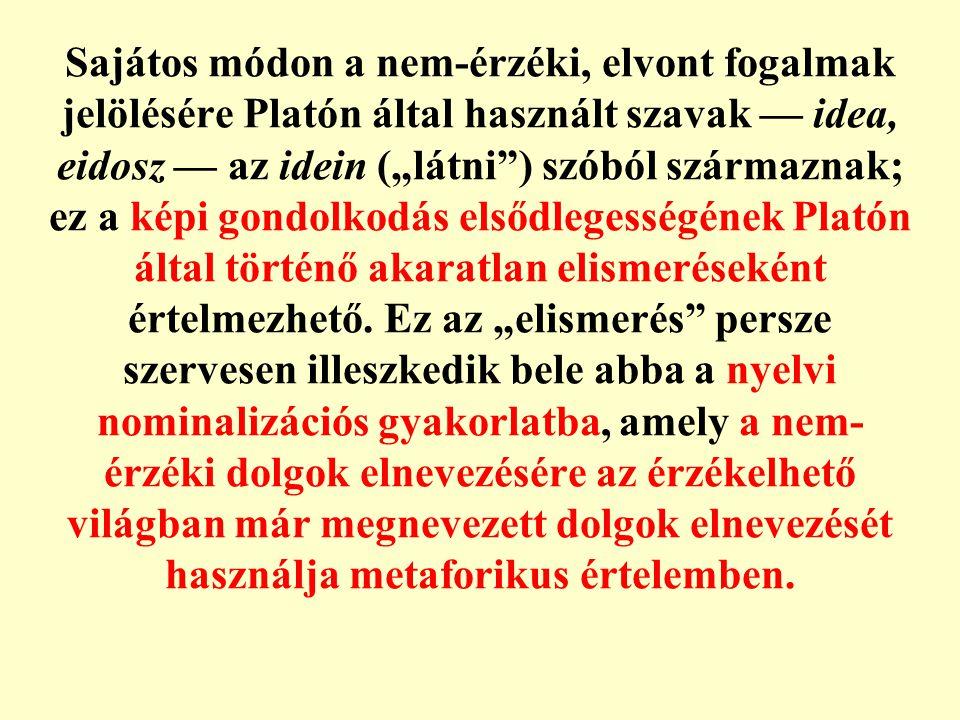 """Sajátos módon a nem-érzéki, elvont fogalmak jelölésére Platón által használt szavak — idea, eidosz — az idein (""""látni ) szóból származnak; ez a képi gondolkodás elsődlegességének Platón által történő akaratlan elismeréseként értelmezhető."""