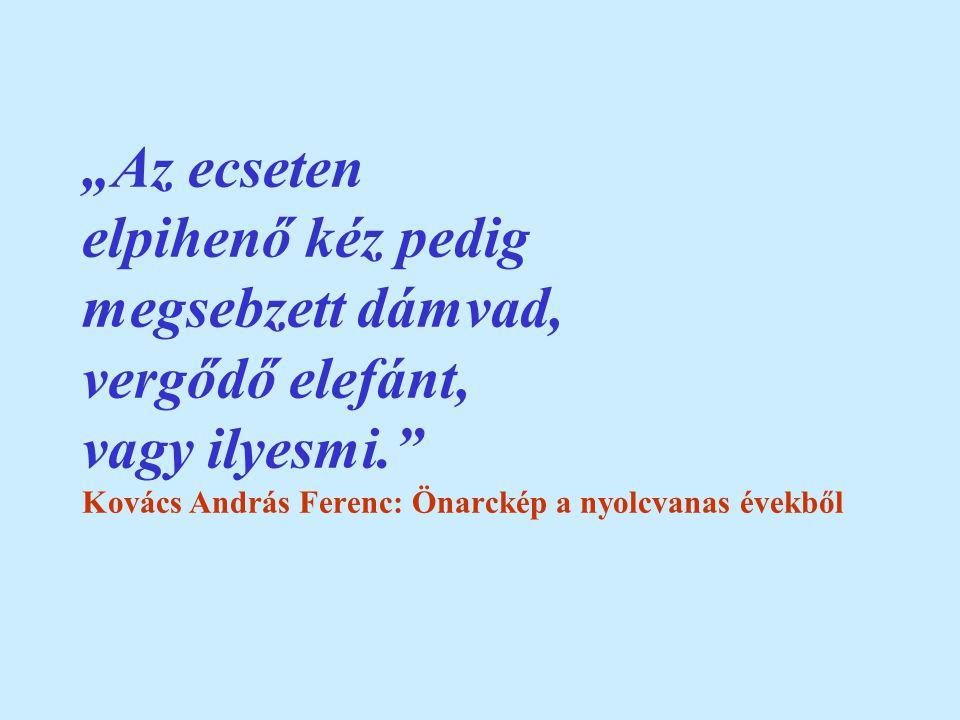 """""""Az ecseten elpihenő kéz pedig megsebzett dámvad, vergődő elefánt, vagy ilyesmi. Kovács András Ferenc: Önarckép a nyolcvanas évekből"""