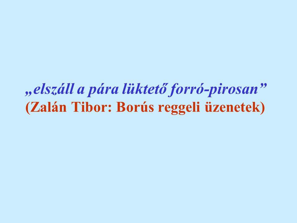 """""""elszáll a pára lüktető forró-pirosan (Zalán Tibor: Borús reggeli üzenetek)"""