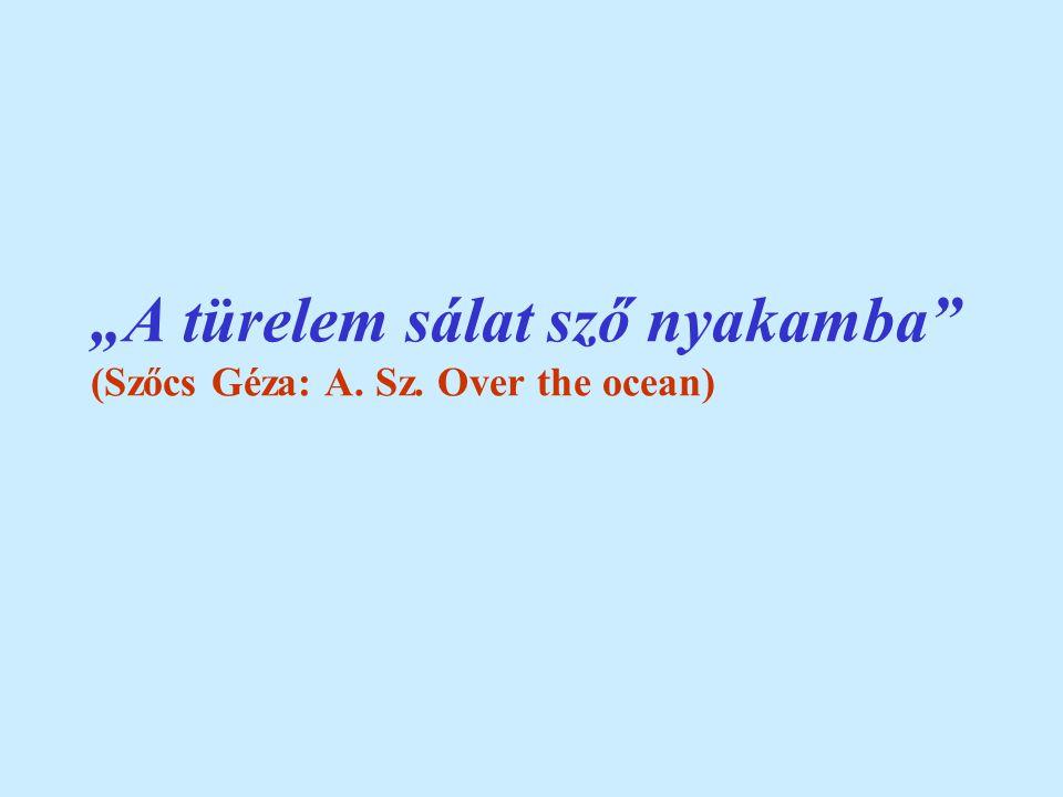 """""""A türelem sálat sző nyakamba (Szőcs Géza: A. Sz. Over the ocean)"""