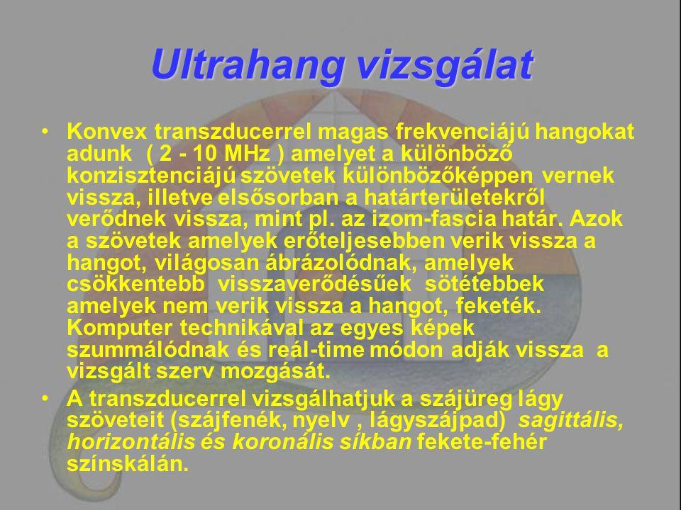 Ultrahang vizsgálat Konvex transzducerrel magas frekvenciájú hangokat adunk ( 2 - 10 MHz ) amelyet a különböző konzisztenciájú szövetek különbözőképpe