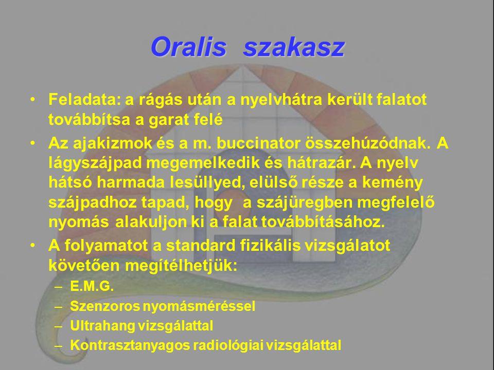 Oralis szakasz Feladata: a rágás után a nyelvhátra került falatot továbbítsa a garat felé Az ajakizmok és a m. buccinator összehúzódnak. A lágyszájpad
