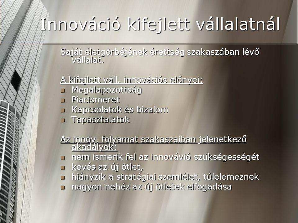 Innováció kifejlett vállalatnál Saját életgörbéjének érettség szakaszában lévő vállalat. A kifejlett váll. innovációs előnyei: Megalapozottság Megalap