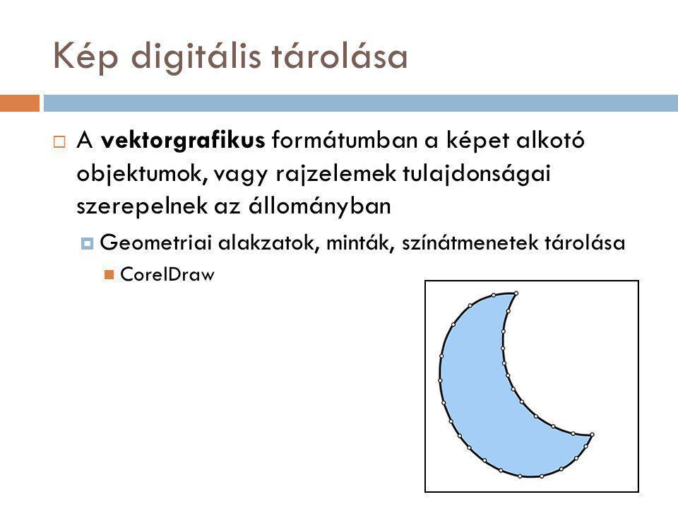 Kép digitális tárolása  A vektorgrafikus formátumban a képet alkotó objektumok, vagy rajzelemek tulajdonságai szerepelnek az állományban  Geometriai alakzatok, minták, színátmenetek tárolása CorelDraw