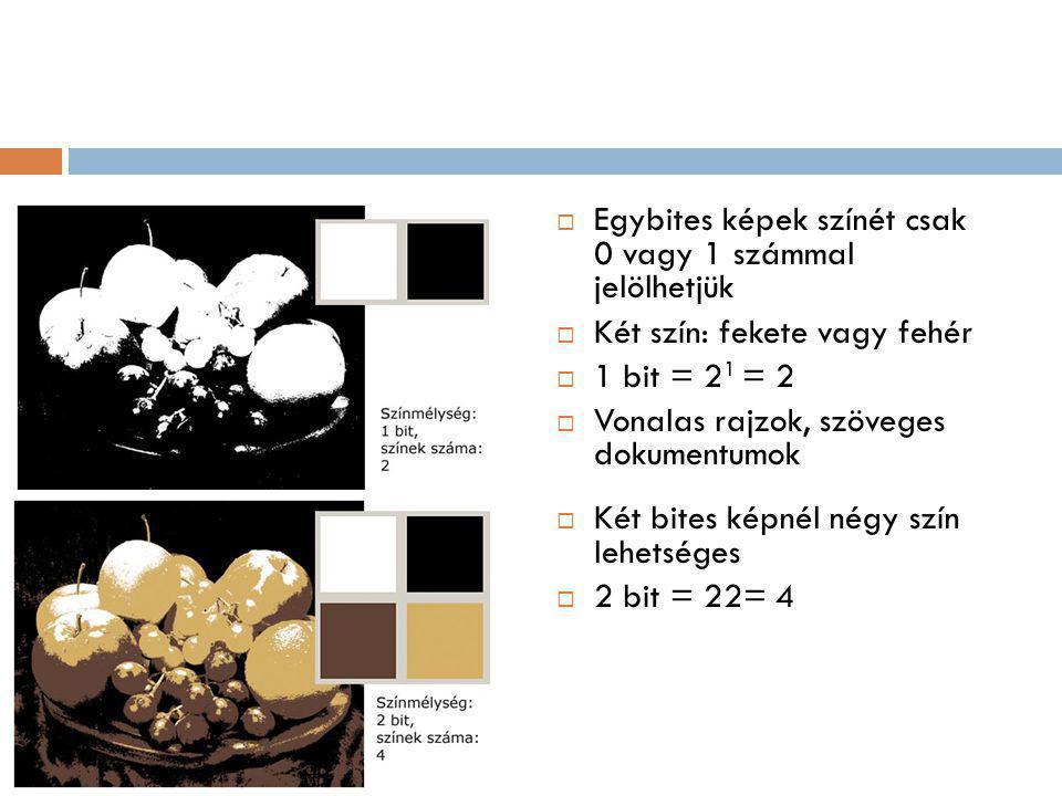  Egybites képek színét csak 0 vagy 1 számmal jelölhetjük  Két szín: fekete vagy fehér  1 bit = 2 1 = 2  Vonalas rajzok, szöveges dokumentumok  Két bites képnél négy szín lehetséges  2 bit = 22= 4