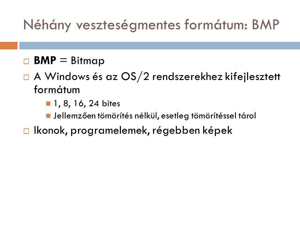 Néhány veszteségmentes formátum: BMP  BMP = Bitmap  A Windows és az OS/2 rendszerekhez kifejlesztett formátum 1, 8, 16, 24 bites Jellemzően tömörítés nélkül, esetleg tömörítéssel tárol  Ikonok, programelemek, régebben képek