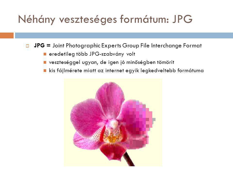 Néhány veszteséges formátum: JPG  JPG = Joint Photographic Experts Group File Interchange Format eredetileg több JPG-szabvány volt veszteséggel ugyan, de igen jó minőségben tömörít kis fájlmérete miatt az internet egyik legkedveltebb formátuma