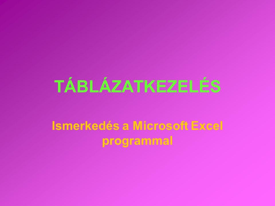 TÁBLÁZATKEZELÉS Ismerkedés a Microsoft Excel programmal