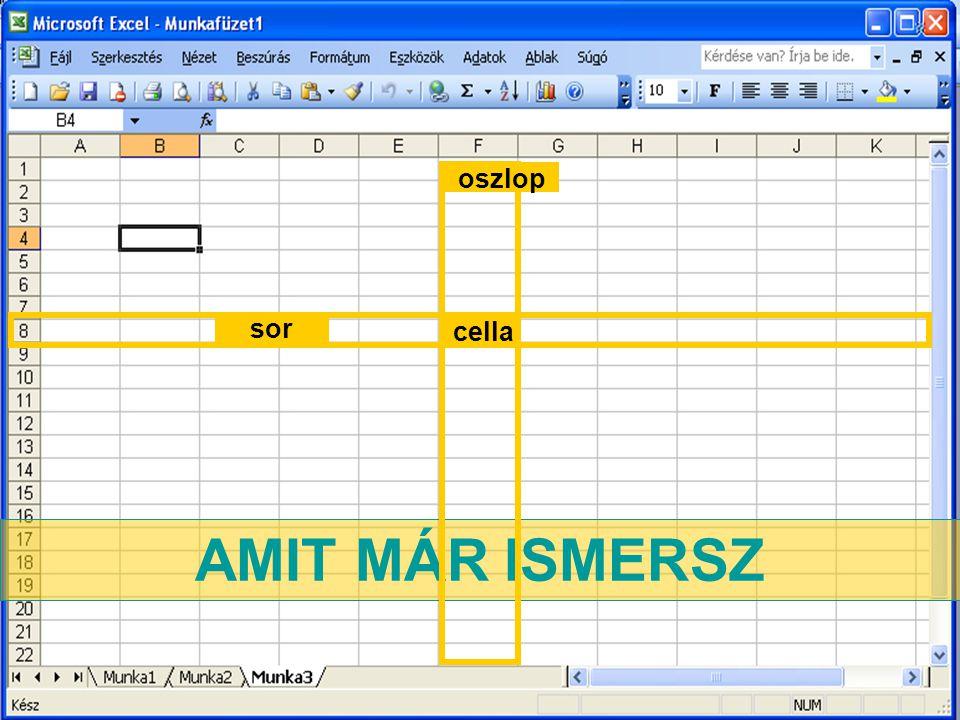 AMIT MÁR ISMERSZ sor oszlop cella