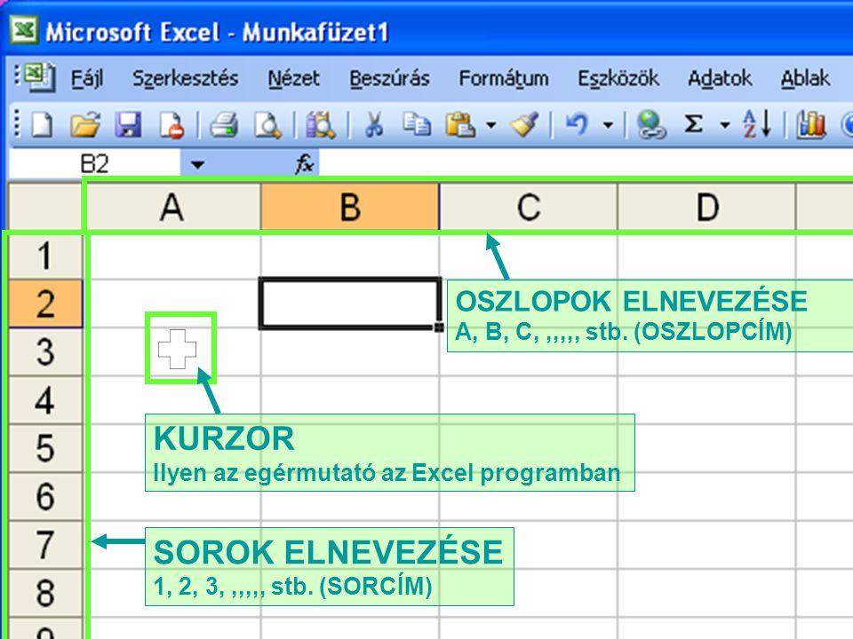 KURZOR Ilyen az egérmutató az Excel programban SOROK ELNEVEZÉSE 1, 2, 3,,,,,, stb. (SORCÍM) OSZLOPOK ELNEVEZÉSE A, B, C,,,,,, stb. (OSZLOPCÍM)