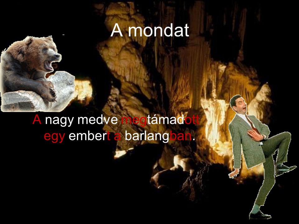 A mondat A nagy medve megtámadott egy embert a barlangban.