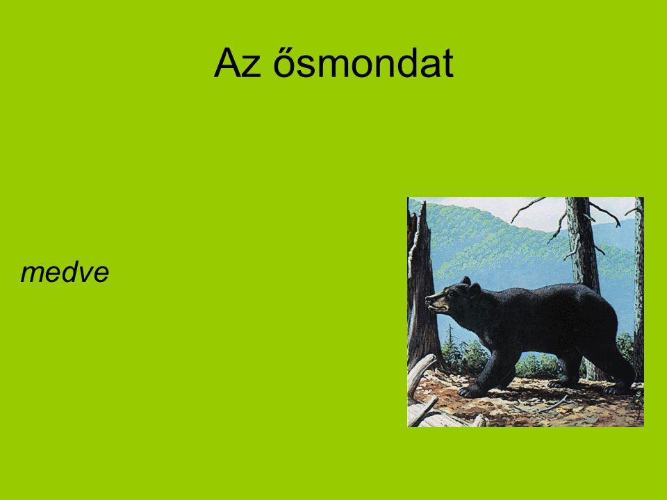 Az ősmondat medve