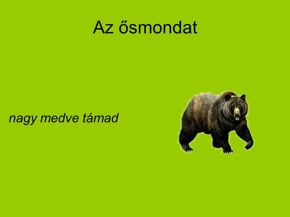 Az ősmondat nagy medve támad