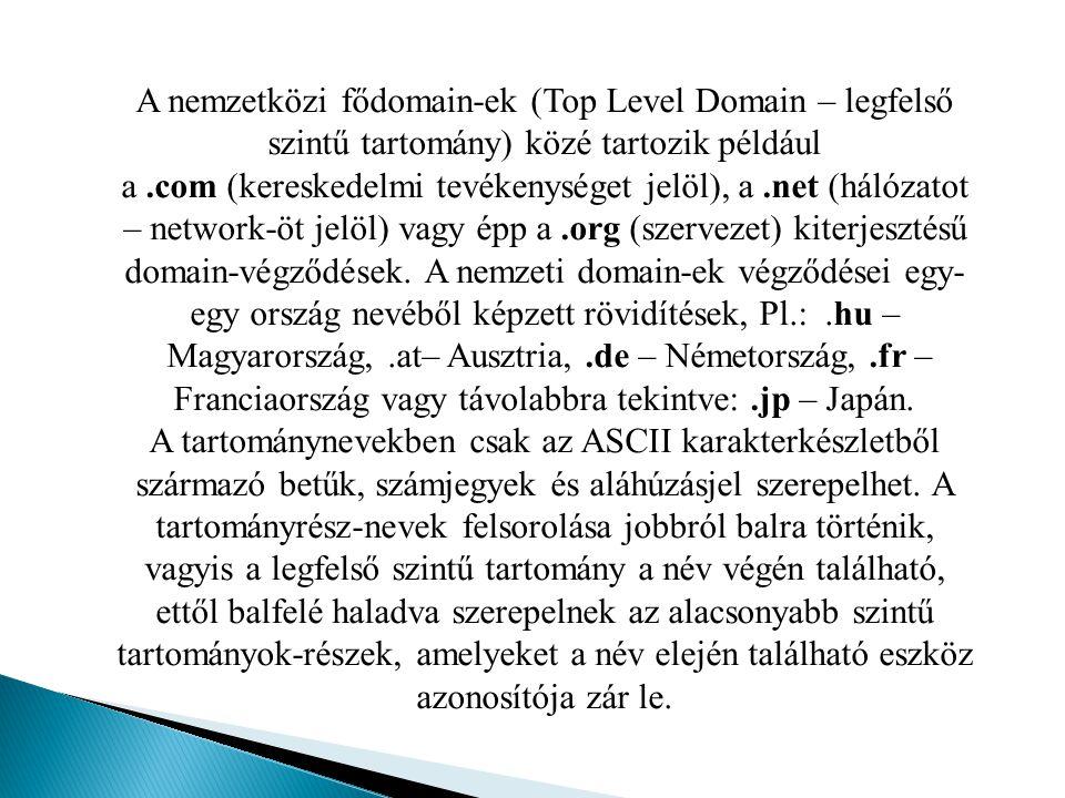 A nemzetközi fődomain-ek (Top Level Domain – legfelső szintű tartomány) közé tartozik például a.com (kereskedelmi tevékenységet jelöl), a.net (hálózat