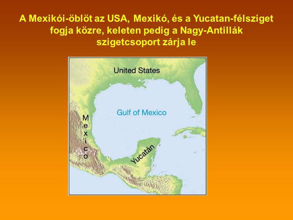 Az utóbbi hetekben a világsajtót uralja a Mexikói-öböl neve A Mexikói-öböl helyét Észak-Amerika térképén a piros ellipszis jelöli