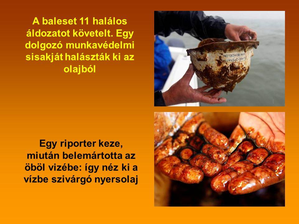 Az olajfolt nagyságát érzékelteti ez a kép: Fejér megyétől Szabolcs-Szatmár-Beregig, illetve Nógrádtól Csongrádig terjedne ki