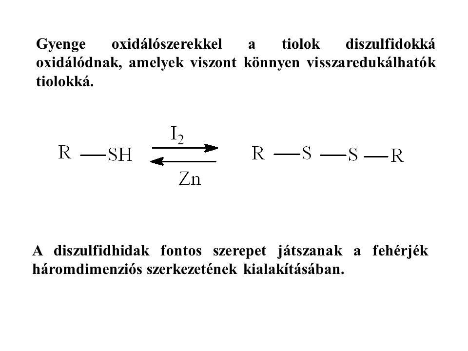 Gyenge oxidálószerekkel a tiolok diszulfidokká oxidálódnak, amelyek viszont könnyen visszaredukálhatók tiolokká. A diszulfidhidak fontos szerepet játs