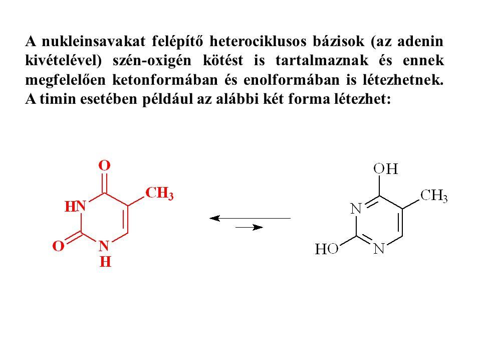 A nukleinsavakat felépítő heterociklusos bázisok (az adenin kivételével) szén-oxigén kötést is tartalmaznak és ennek megfelelően ketonformában és enol