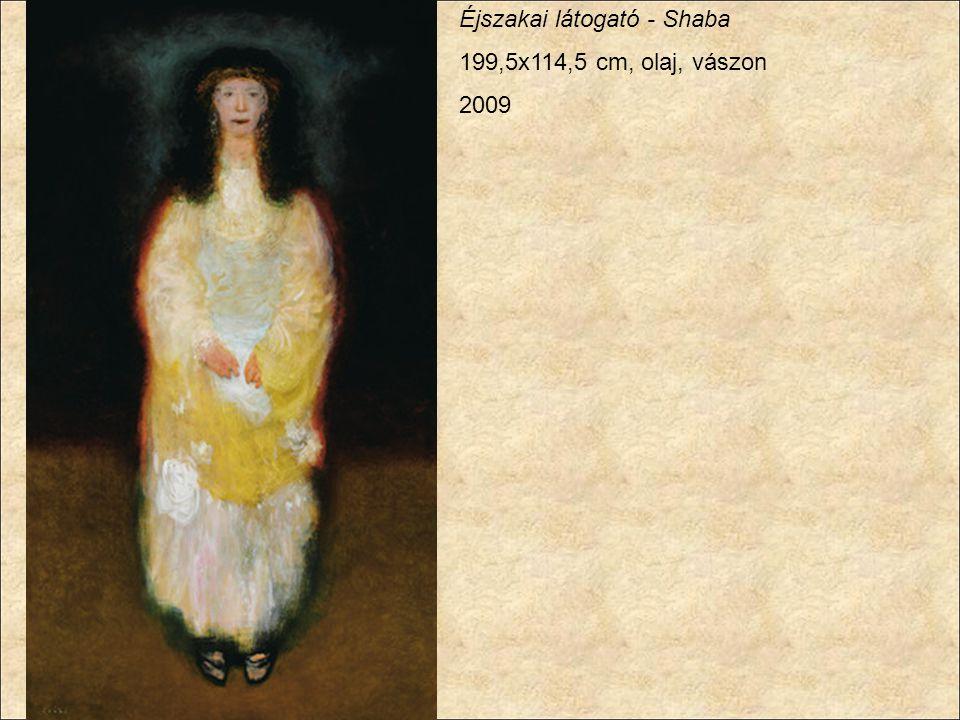 Éjszakai látogató - Shaba 199,5x114,5 cm, olaj, vászon 2009
