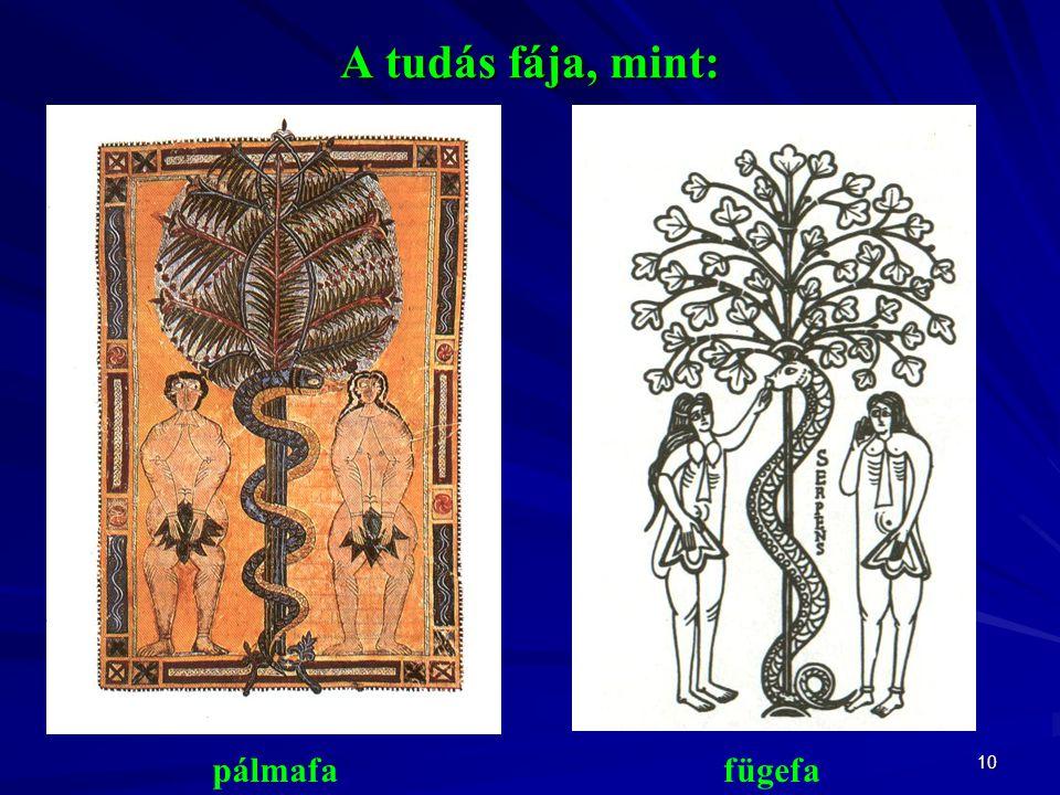 10 A tudás fája, mint: pálmafafügefa