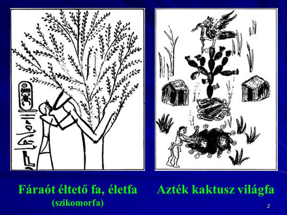 2 Fáraót éltető fa, életfa (szikomorfa) Azték kaktusz világfa