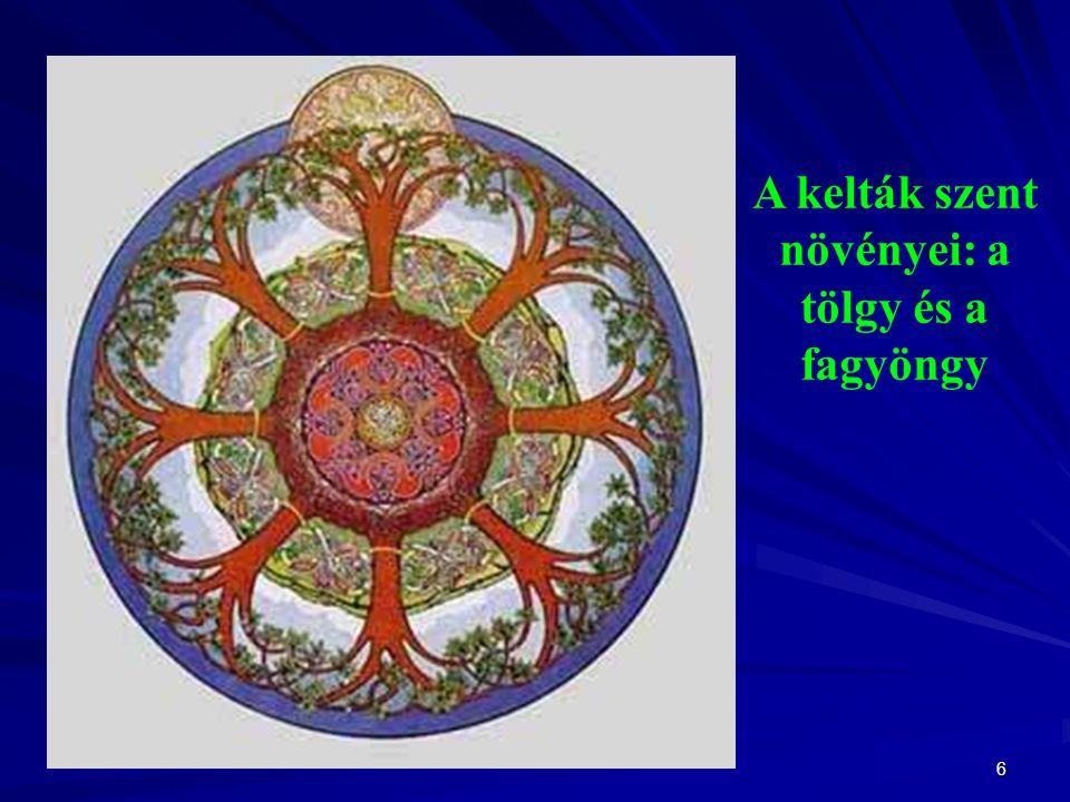 6 A kelták szent növényei: a tölgy és a fagyöngy