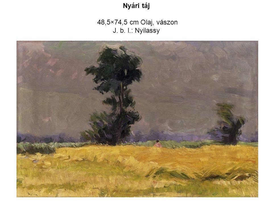 Nyári táj 48,5×74,5 cm Olaj, vászon J. b. l.: Nyilassy