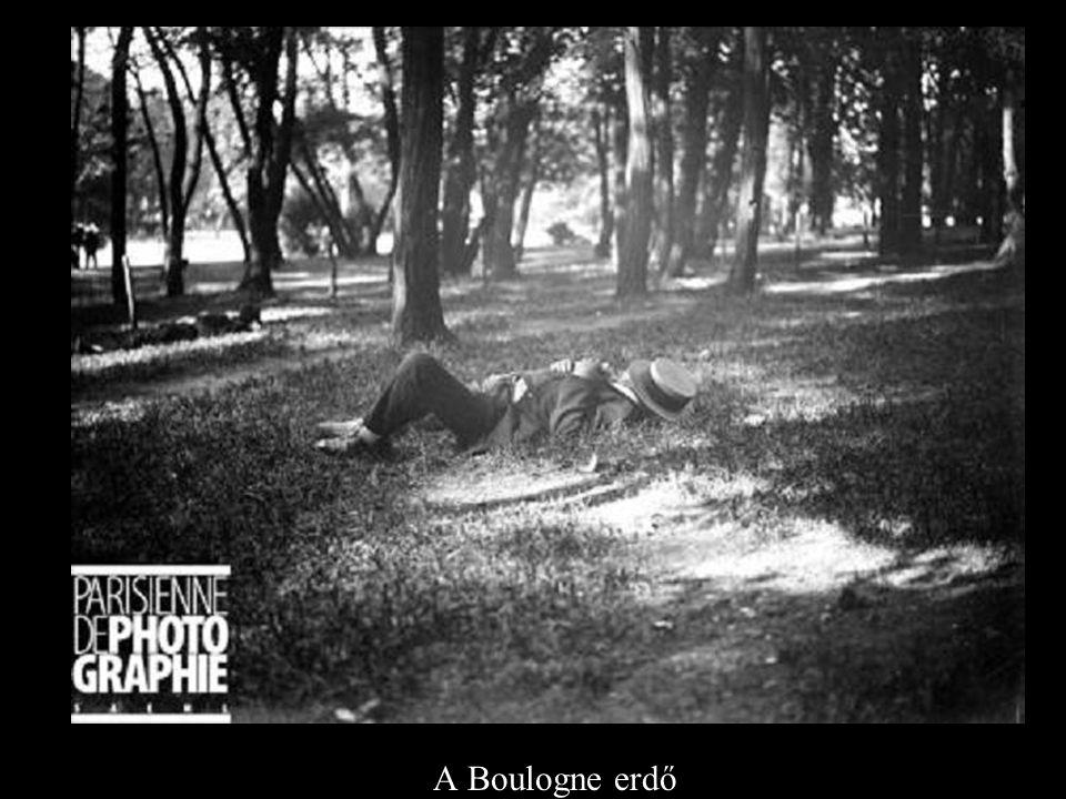 A Boulogne erdő
