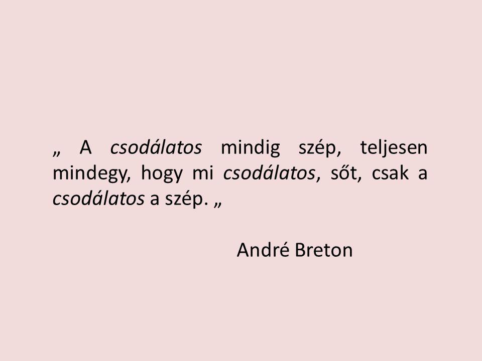 """"""" A csodálatos mindig szép, teljesen mindegy, hogy mi csodálatos, sőt, csak a csodálatos a szép. """" André Breton"""