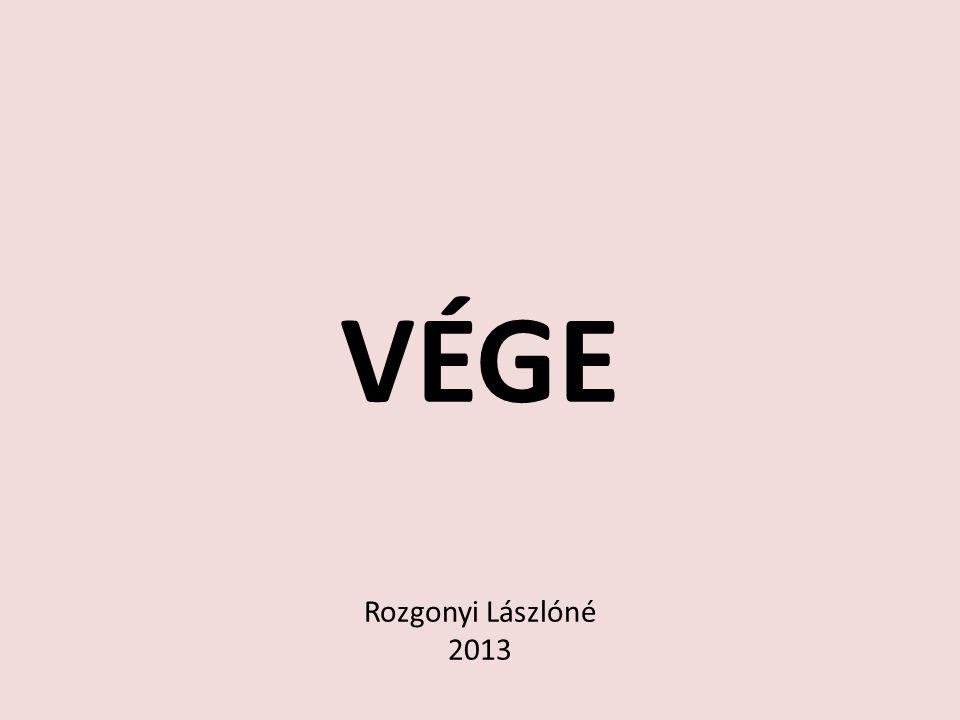 VÉGE Rozgonyi Lászlóné 2013