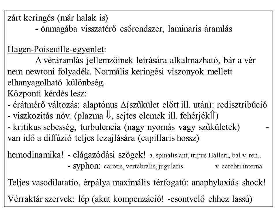 zárt keringés (már halak is) - önmagába visszatérő csőrendszer, laminaris áramlás Hagen-Poiseuille-egyenlet: A véráramlás jellemzőinek leírására alkal