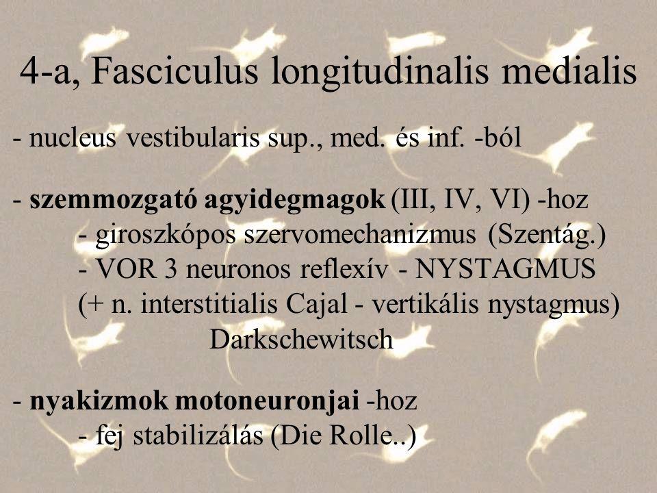 A Vesztibulo-Okuláris Reflex - VOR Bárány Róbert - kalorikus nystagmus Nobel-díj - 1914 (de forgatásos/optokin.) Hőgyes Endre - 1911 - élettani nyúl-kísérletek Lorente de Nó - elektrofiziológiai kutatás Szentágothai János 1944, Pécs és 1952, Budapest anatómiai és élettani adatok szintézise klasszikus 3 neuronos reflexpálya VOR Újabb állatkísérletek - forgatásos nisztagmográfia trapézalakú sebességdiagram - tisztán értékelhető gyorsulási és lassulási nystagmus - VOR - RSTO Reflex of Spatiotemporal Orientation