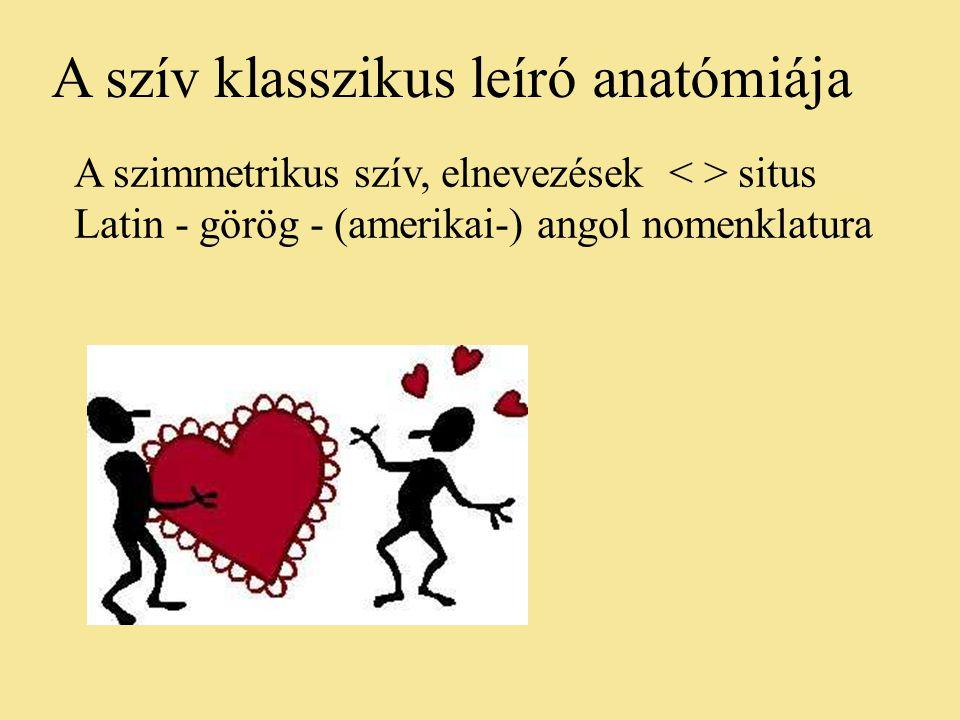 A szimmetrikus szív, elnevezések situs Latin - görög - (amerikai-) angol nomenklatura A szív klasszikus leíró anatómiája