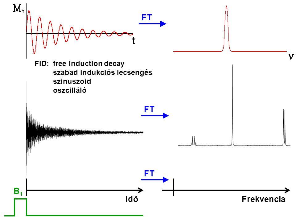 FID: free induction decay szabad indukciós lecsengés szinuszoid oszcilláló FT B1B1 IdőFrekvencia