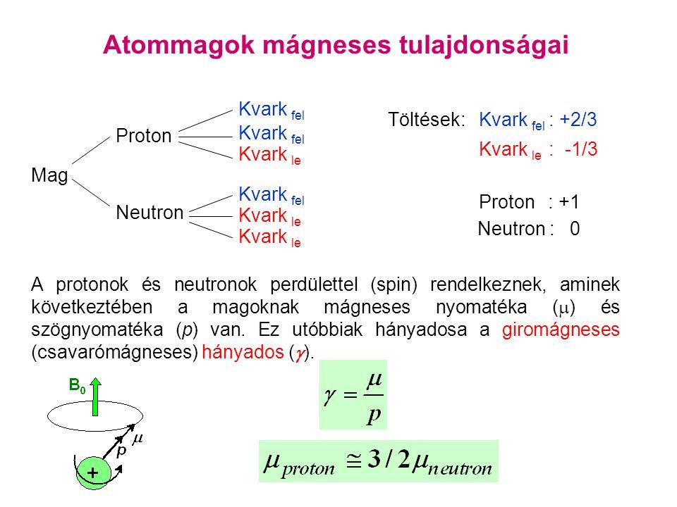 Atommagok mágneses tulajdonságai Mag Proton Neutron Kvark fel Kvark le Kvark fel Kvark le Töltések:Kvark fel : +2/3 Kvark le : -1/3 Proton : +1 Neutron : 0 A protonok és neutronok perdülettel (spin) rendelkeznek, aminek következtében a magoknak mágneses nyomatéka (  ) és szögnyomatéka (p) van.