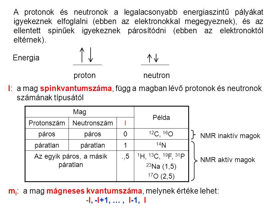 A protonok és neutronok a legalacsonyabb energiaszintű pályákat igyekeznek elfoglalni (ebben az elektronokkal megegyeznek), és az ellentett spinűek igyekeznek párosítódni (ebben az elektronoktól eltérnek).