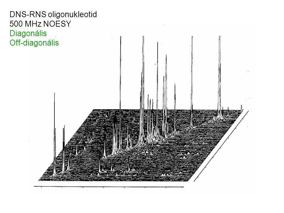 DNS-RNS oligonukleotid 500 MHz NOESY Diagonális Off-diagonális