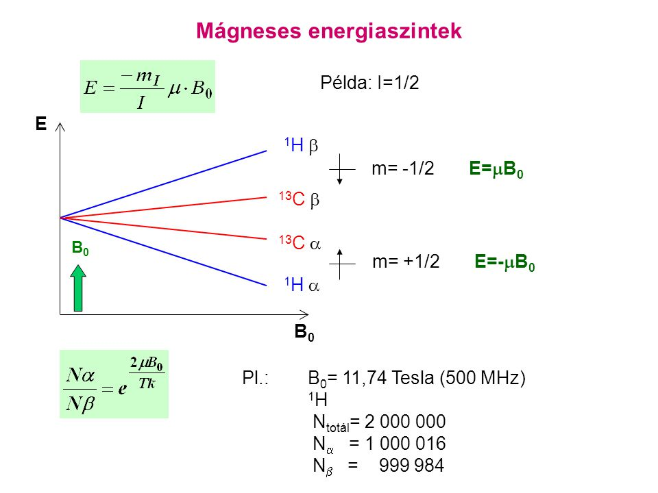 Mágneses energiaszintek B0B0 1H 1H  1H 1H  E m= +1/2 E=-  B 0 m= -1/2 E=  B 0 B0B0 13 C  13 C  Példa: I=1/2 Pl.:B 0 = 11,74 Tesla (500 MHz) 1 H N totál = 2 000 000 N  = 1 000 016 N  = 999 984