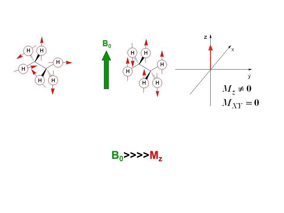 B0B0 B 0 >>>>M z