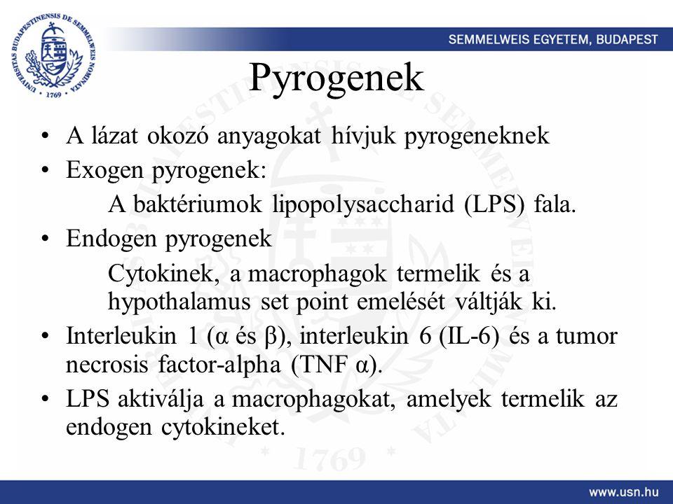 Pyrogenek A lázat okozó anyagokat hívjuk pyrogeneknek Exogen pyrogenek: A baktériumok lipopolysaccharid (LPS) fala. Endogen pyrogenek Cytokinek, a mac