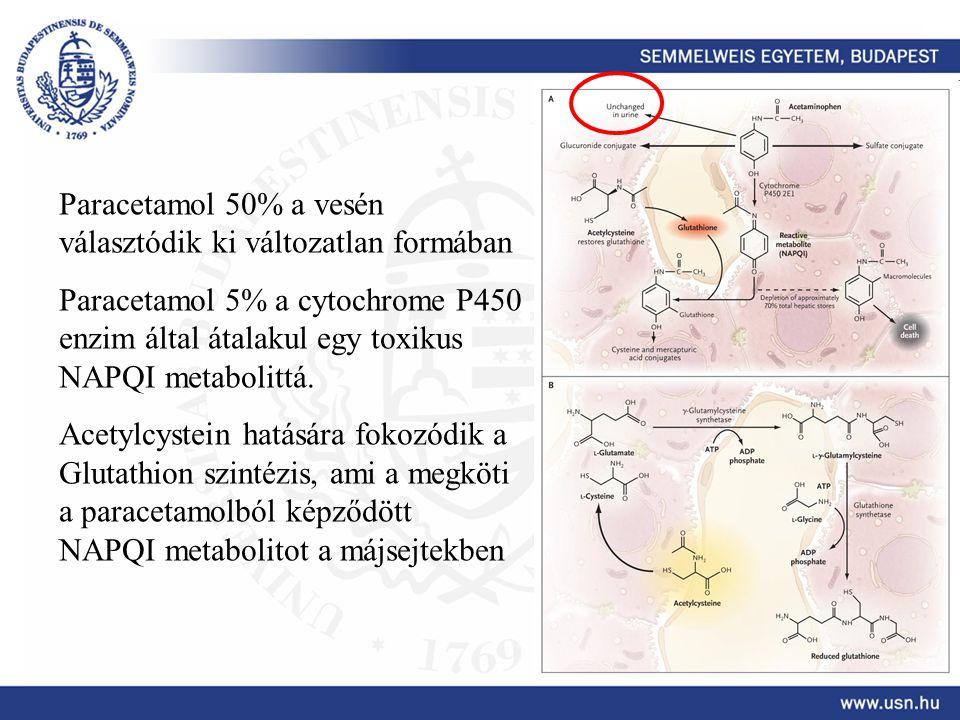 Paracetamol 50% a vesén választódik ki változatlan formában Paracetamol 5% a cytochrome P450 enzim által átalakul egy toxikus NAPQI metabolittá. Acety